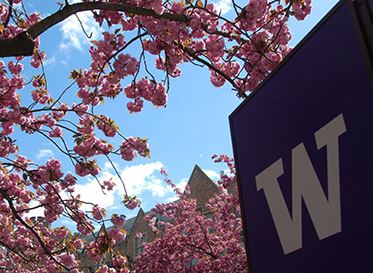Apply Now   Undergraduate Admissions   UW Bothell