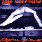 Cold Modernism: Literature, Fashion, Art