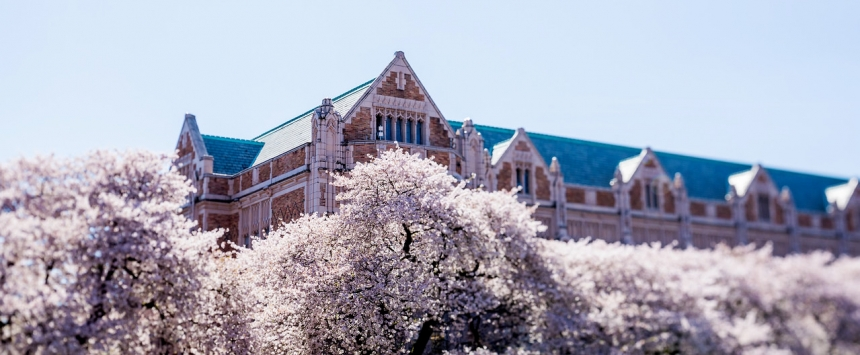 Raitt Hall rises above cherry trees in full bloom