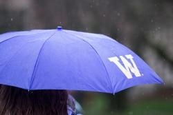 UW Umbrella